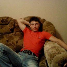 Александр, 28 лет, Челбасская
