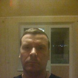 Андрей, 39 лет, Красное Село