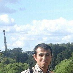 магамед, 27 лет, Пушкино