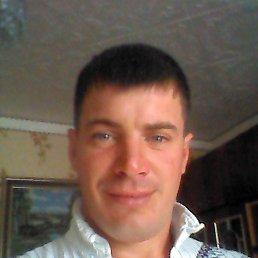 Саня, 35 лет, Александров Гай