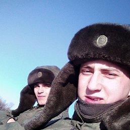 Алексей, 26 лет, Новобурейский