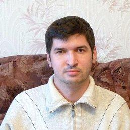 Гена, 41 год, Полтавская