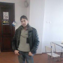 Андрюха, 28 лет, Юрюзань