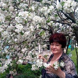 Тамара, 49 лет, Миргород
