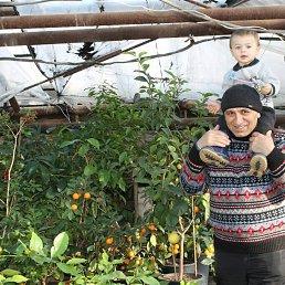 Шариф, 57 лет, Владивосток