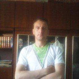 Сергей, 36 лет, Карабаш