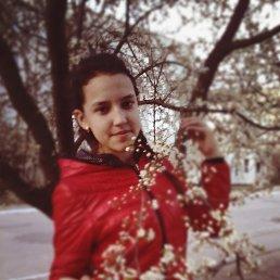 Дарина, 20 лет, Славута