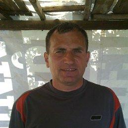 Николай, 44 года, Красный Лиман