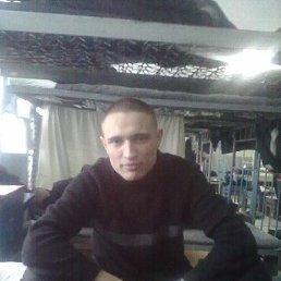 Алекс, 28 лет, Шатки