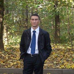 александр, 37 лет, Селятино