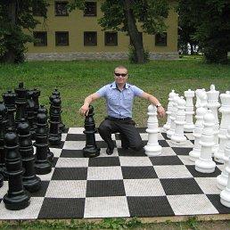 Дмитрий, 29 лет, Донской