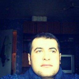 Али, 26 лет, Дмитров-5