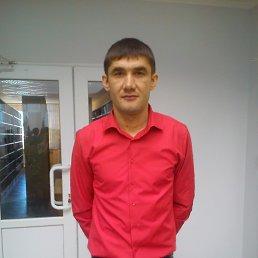 Ильнур, 37 лет, Камское Устье