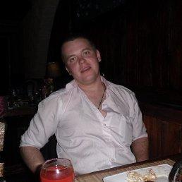 Анатолий, 30 лет, Донской