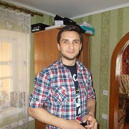 Александр, 25 лет, Розовка
