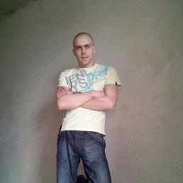 Коля, 36 лет, Калуш