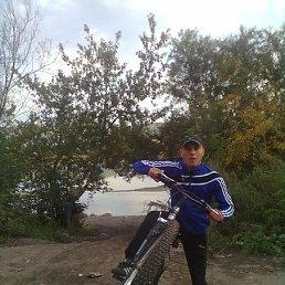 Дима, 28 лет, Ужур