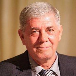 Виктор, 65 лет, Пологи