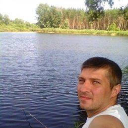 Александр, 36 лет, Обухов