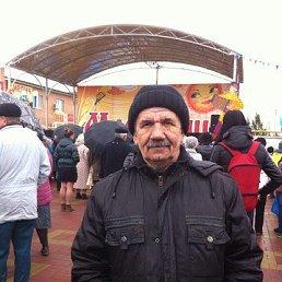 Василий, 65 лет, Семикаракорск
