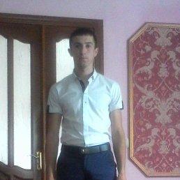 Віталік, 27 лет, Стрый