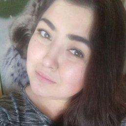 Viktoria, 28 лет, Сокол
