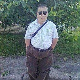 Володья, Горохов, 38 лет