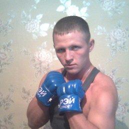 Виталий, 29 лет, Вейделевка