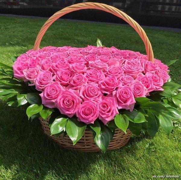 картинки розы букеты большие с добрым утром для