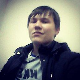 Никита, 21 год, Полазна