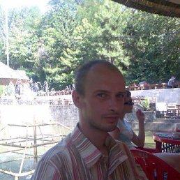 Алексей, 41 год, Лотошино