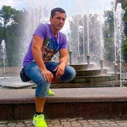 Дмитрий, 26 лет, Новотроицкое