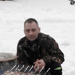 Серега, 40 лет, Пестово