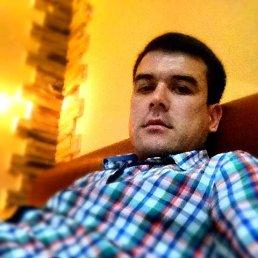 Фарход, 25 лет, Малаховка