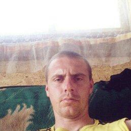 Александр, 28 лет, Порхов