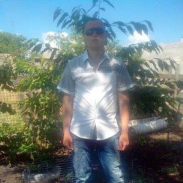Виталий, 41 год, Гуляйполе