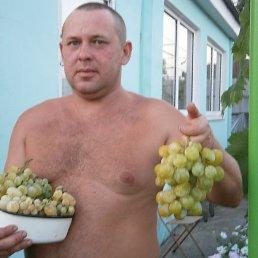 Александр, 41 год, Рубежное