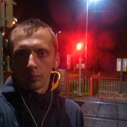 Павел, 29 лет, Хотьково