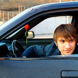 Элчин, 29 лет, Реутов