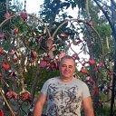 Фото Евгений, Магнитогорск, 55 лет - добавлено 16 июня 2016