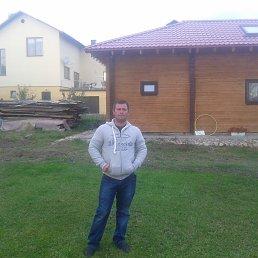 Геннадий, 35 лет, Калуга