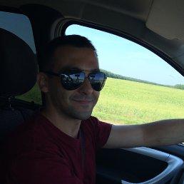 Владимир, 35 лет, Серебряные Пруды