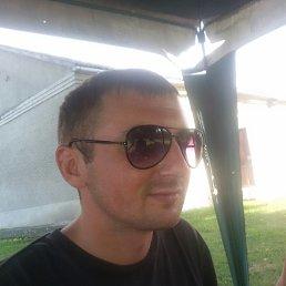 Роман, 30 лет, Жидачов