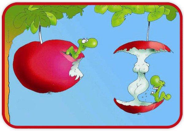 День, прикольные картинки о яблочке