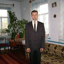 Евгений, 40 лет, Серышево