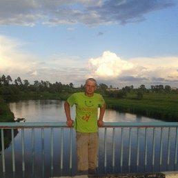 Василий, 28 лет, Солнечногорск