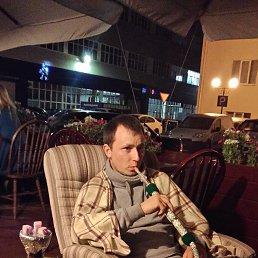 Марк, 29 лет, Котельники