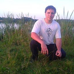 Артем, 32 года, Шостка