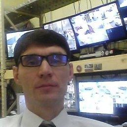 Михаил, 42 года, Струнино