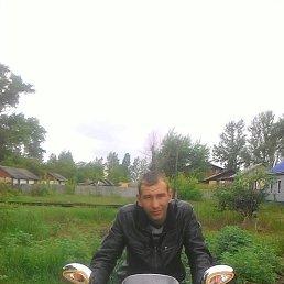 Дима, 29 лет, Новохоперский